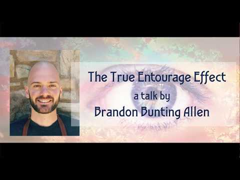 Brandon Bunting Allen Aware Project- The True Entourage Effect: Nutritional Ketosis and Cannabis