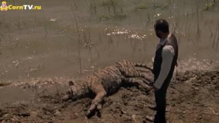 Мир дикого запада 2 сезон — Трейлер 2018