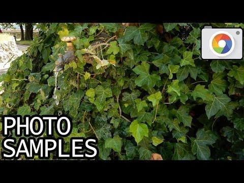 Nikon Coolpix S9700 sample photos