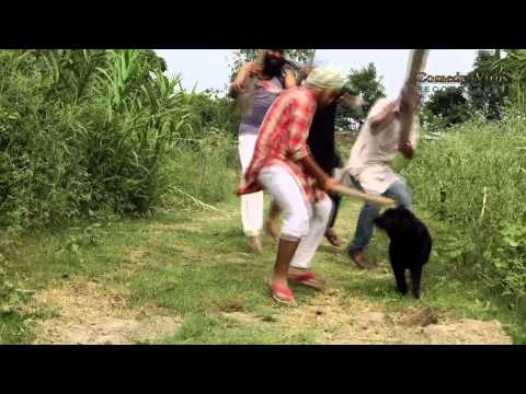 punjabi comedy song kuti