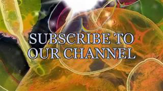 Welcome to #JaymanLive Variety Entertainment Channel
