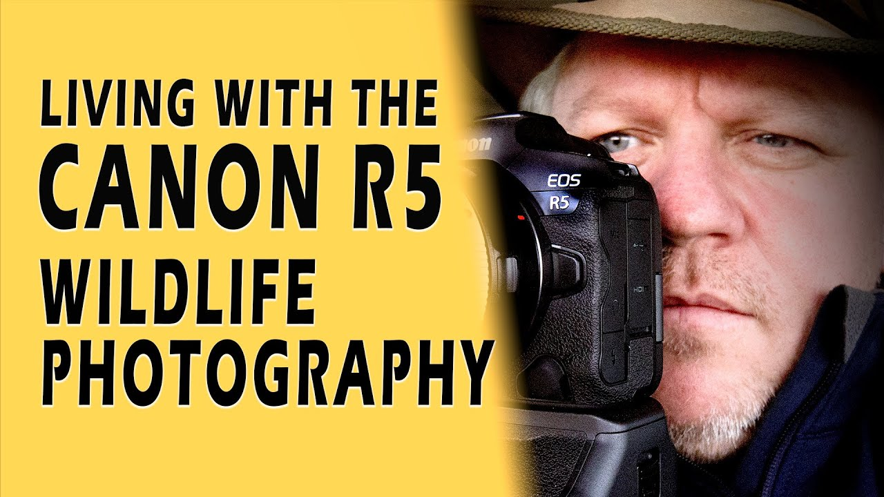 Canon EOS R5 Wildlife Photography - Perfect in Real life?