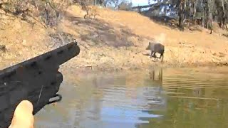 Hunting pigs from a kayak