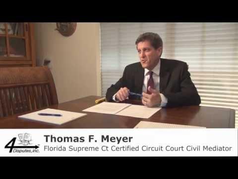 Mediation Opening Statement by Thomas Meyer