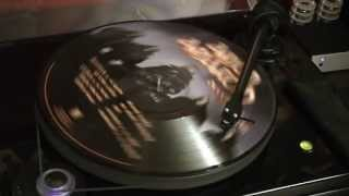 Amon Amarth - Deceiver of the Gods (Picture Vinyl LP record Demo)