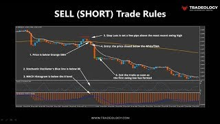 Profigenics Forex System Review - Gift - Proven Forex 80 20 Cash System