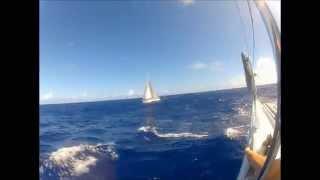Extreme Atlantic crossing 2012