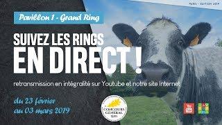 Grand Ring 03/03/2019