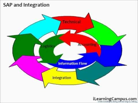 SAP R3 Overview   SAP Enterprise Resource Planning   Chapter 1 PART B