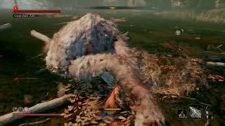 Sekiro™: Shadows Die Twice wrecked that ape