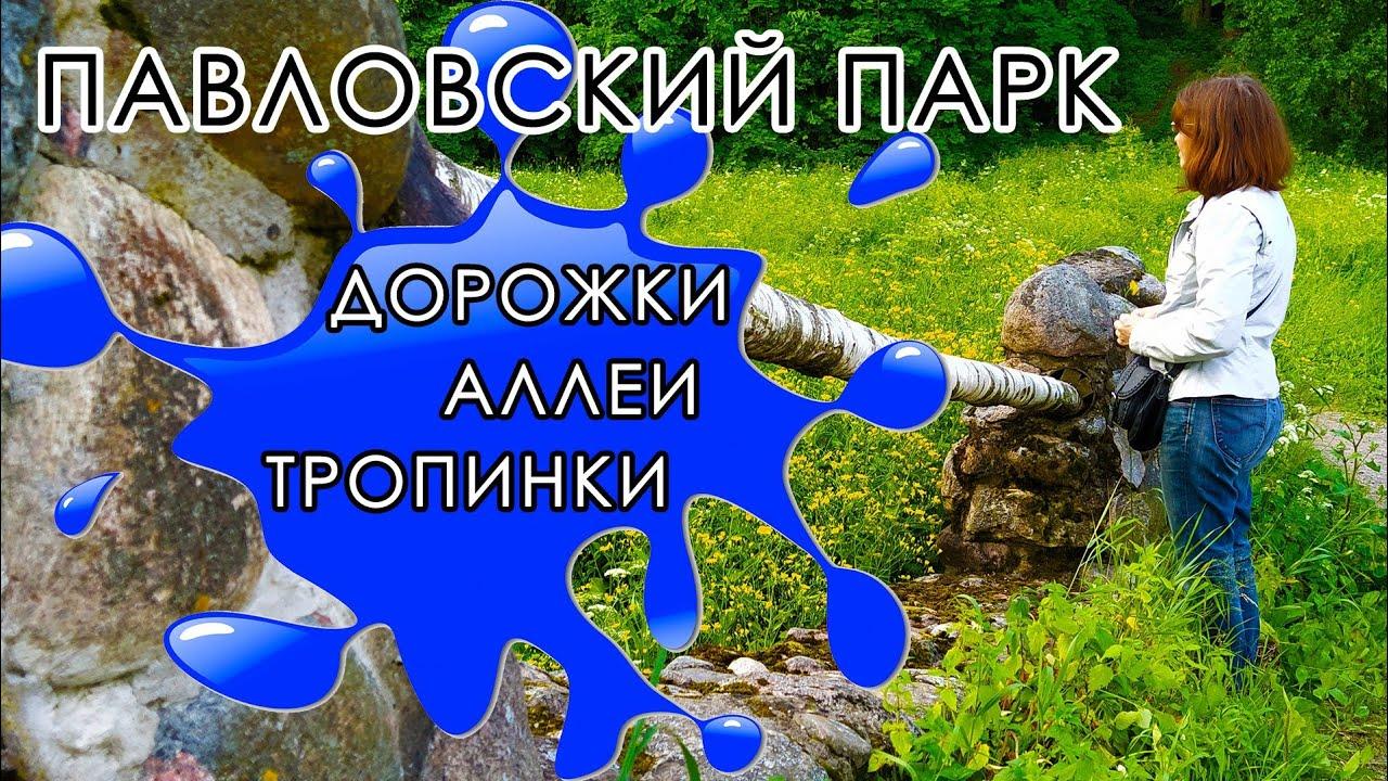 Павловский парк#Новосильвийский Мост#Район Белая береза