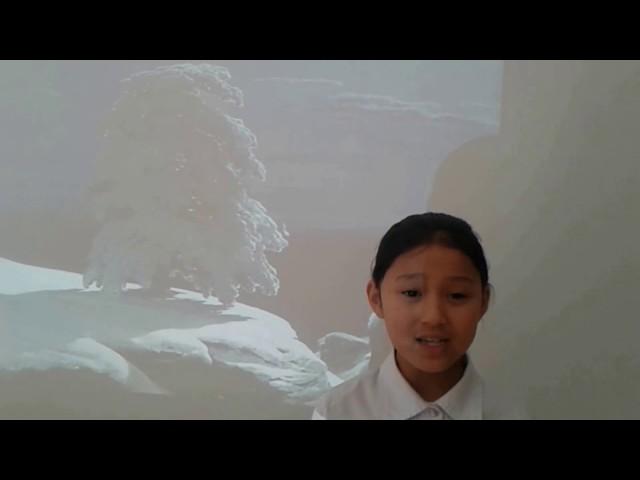 Изображение предпросмотра прочтения – АнастасияБатудаева читает произведение «На севере диком стоит одиноко…» М.Ю.Лермонтова