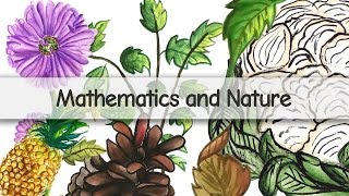 Mathematics and Nature - A Grand Collaboration - Fibonacci Numbers and Golden Ratio