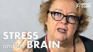 Stress and the Brain: An Interview
