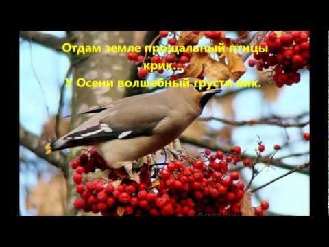 рябиновая осень фото