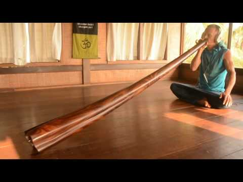 Didgeridoo ETHNO-MAGIC C#  from hard palisander wood 210 sm