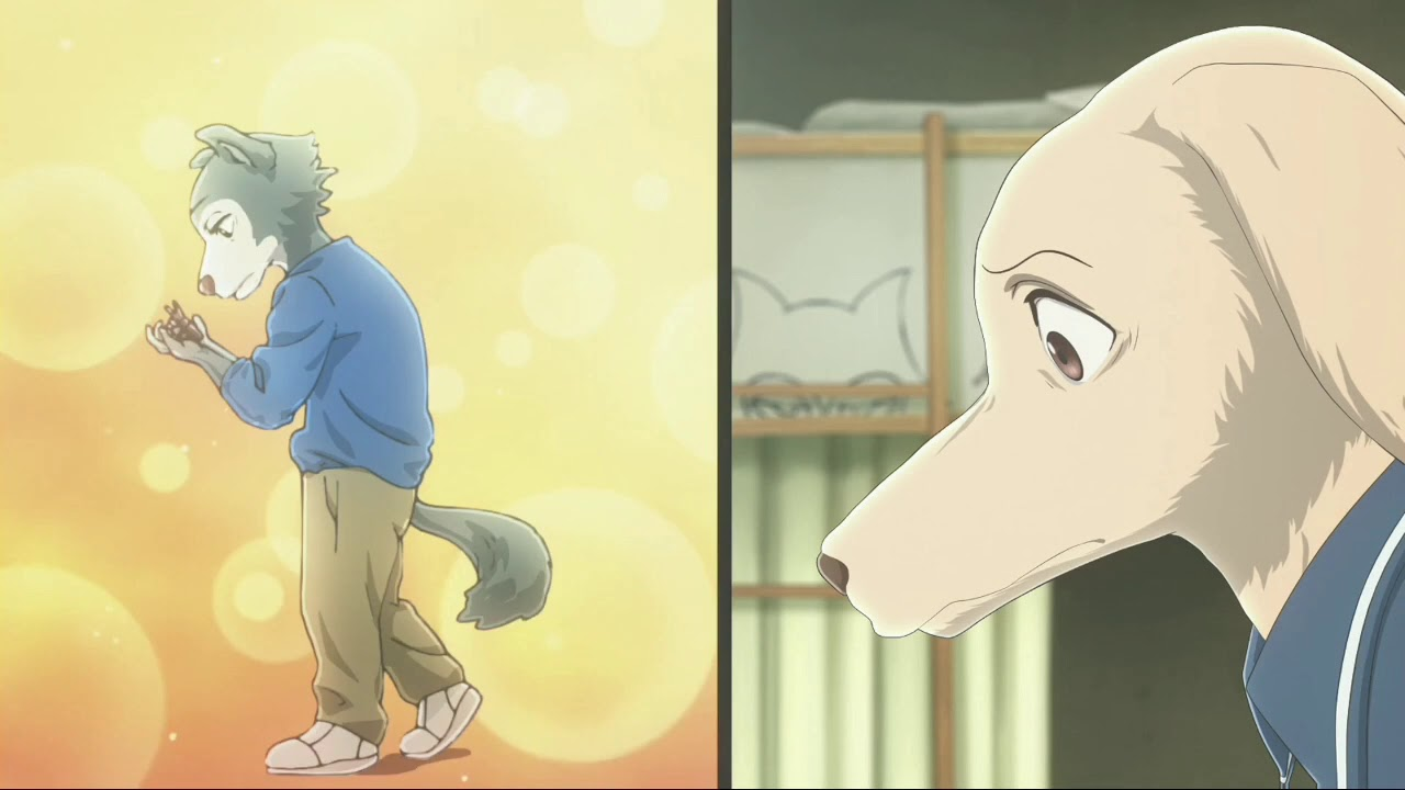 Anime Porn With Animals when legosi's porn dvd was discoveredhis friend   beastars eps 7