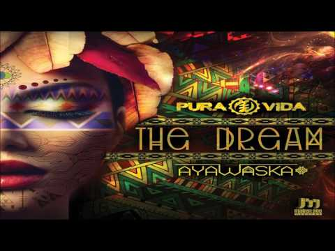 Pura Vida & Ayawaska - The Dream ᴴᴰ
