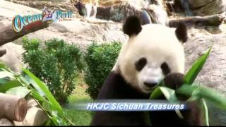 iVenture Hong Kong & Macau: Ocean Park Hong Kong