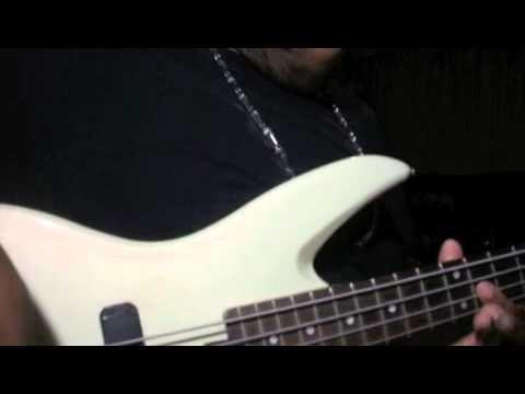 "Mali Music ""Job Experience"" (Bass Cover) W/ Ryan Copeland On Bass"