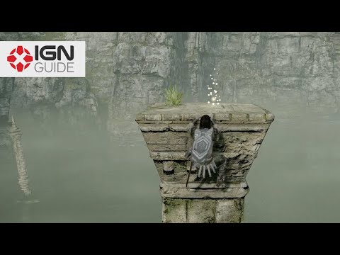 Shadow of the Colossus - Where to Find all 79 Gold Coins
