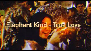 Elephant Kind - True love (Malioboro Night)