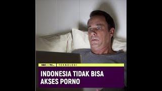 INDONESIA TIDAK BISA AKSES PORNO