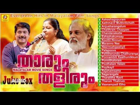 താരും തളിരും  | Non Stop Malayalam Movie Songs | Evergreen Hits Songs |  K. J. Yesudas & K S Chitra