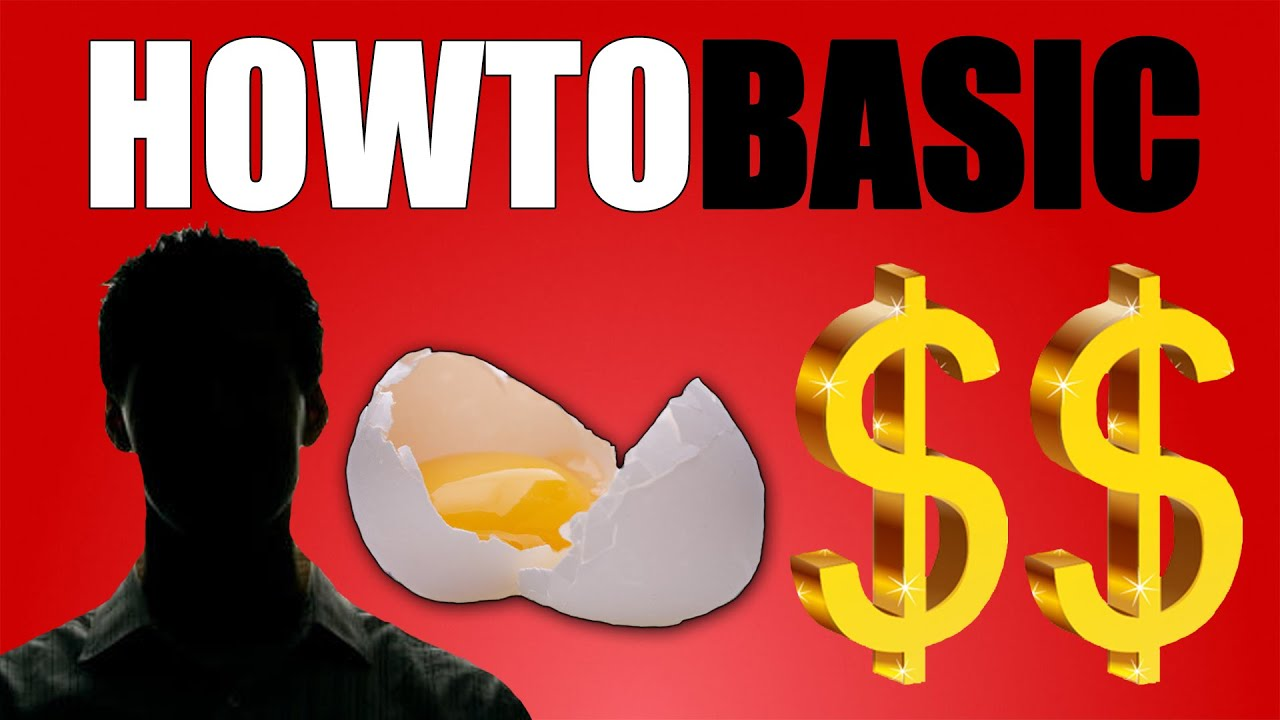 How Much Does Howtobasic Make? 20161230