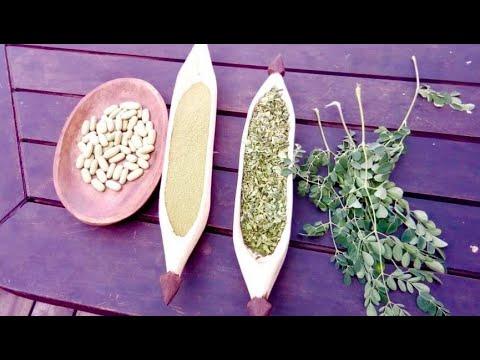 Das solltet Ihr über die nährstoffreichste Pflanze der Welt wissen!