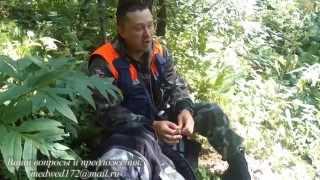 лесной поиск.  урок выживания №1