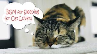 Bgm For Sleepingfor Cat Lovers  猫好きの為の【睡眠用bgm】眠くなる音楽コンピレーション