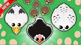 *NEW* BIRD UPDATE IN MOPE.IO! // FUNNY NEW FALCON GLITCH (Mope.io New Update)