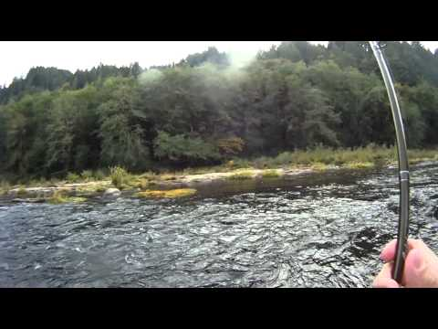 Bobber Fishing Chinook Salmon On The Siuslaw River