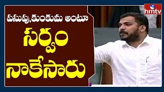 Minister Anil Kumar Yadav Disgusting Comments on TDP Leaders | AP Assembly Day - 2 | hmtv