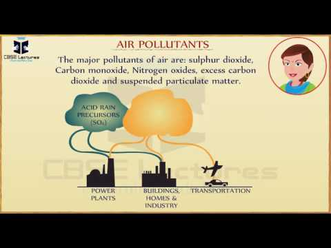 pollution-of-air-and-water-class-8-science-cbse-lectures