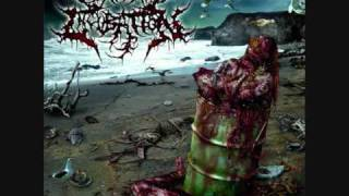 Cerebral Incubation - Gastrointestinal Rape