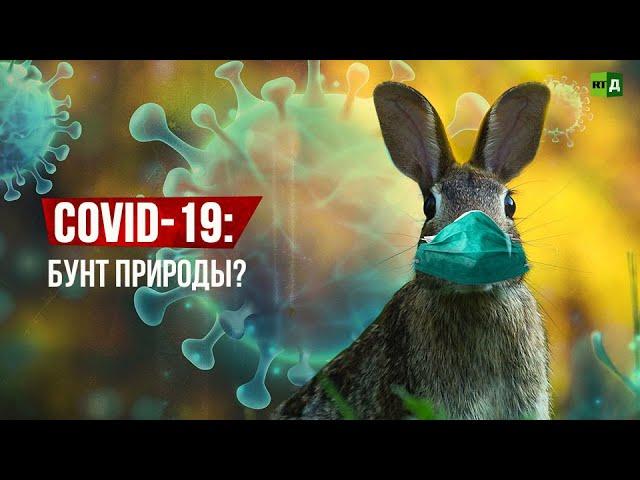 COVID-19: бунт природы?