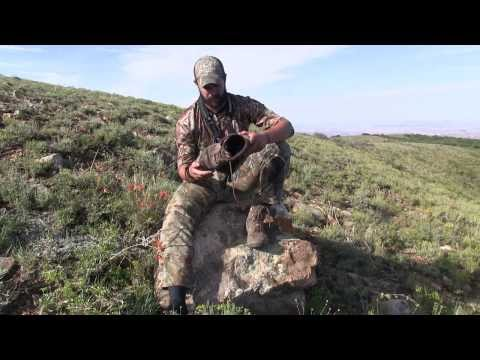 Wolverine Bobwhite Hunting Boots Review