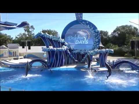 Dolphin Days SeaWorld Orlando Premiere