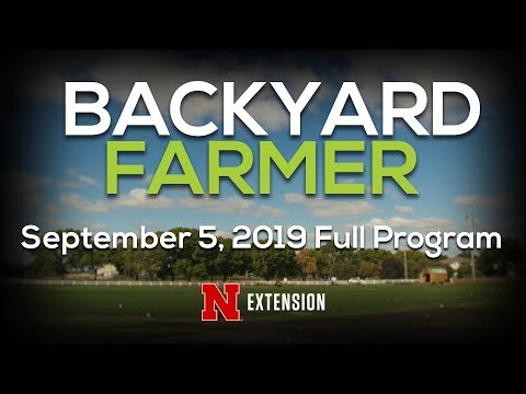 Backyard Farmer September 5, 2019