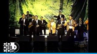 Silvio Brito - Me Quito El Nombre | En Vivo