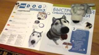 Обзор мягких игрушек The dog collection