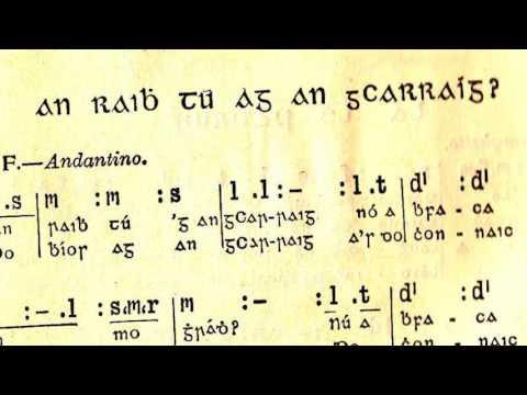 Languages: Irish; Celtic; Gaelic; Gaeilge; Scots; Welsh; Indo European Branches Fada #13