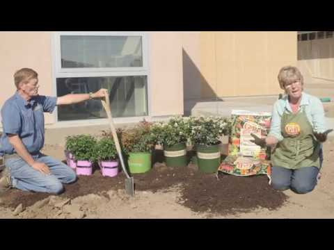 Breaking Up Tough Soils And Clay With Soil Building Conditioner