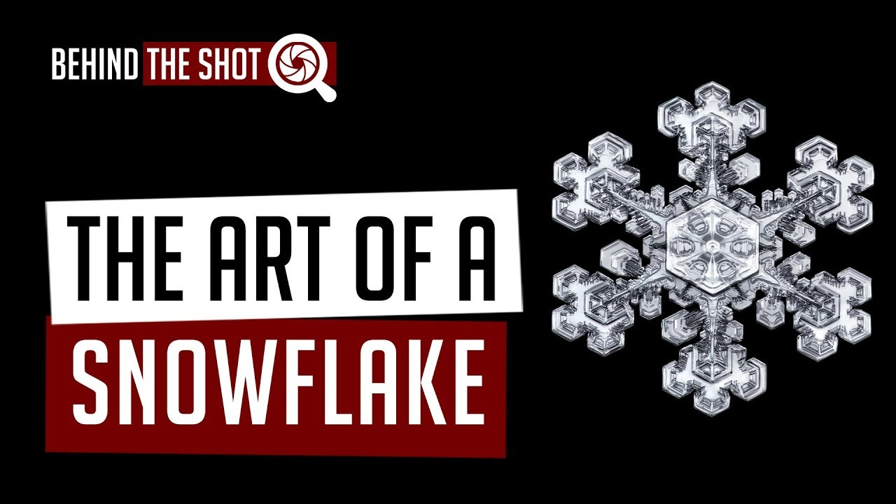 The Art Of The Snowflake The Mysteries Of The Macro Universe