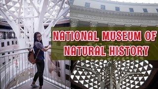 NATIONAL MUSEUM OF NATURAL HISTORY | PHILIPPINES | ARCHITECTURE | HISTORY |