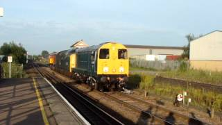 Harry Needle Choppers 20096 and 20314 with Deltic 55019 and Horse!! ........Platform 13 Presents