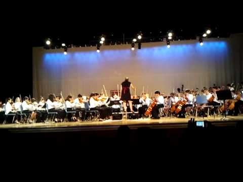 Arvida Middle School Orchestra Spring 2012 - Clog Dance