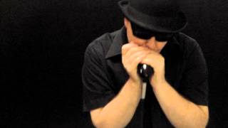 Rocker - Little Walter Blues Harmonica Cover